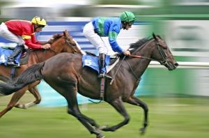 bigstock_Horse_Racing_622988.jpg%20horses