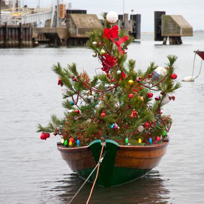 1214-nantucket-christmas-tree